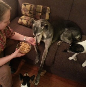 During chemo, Matilda was hand fed home-cooked meals.